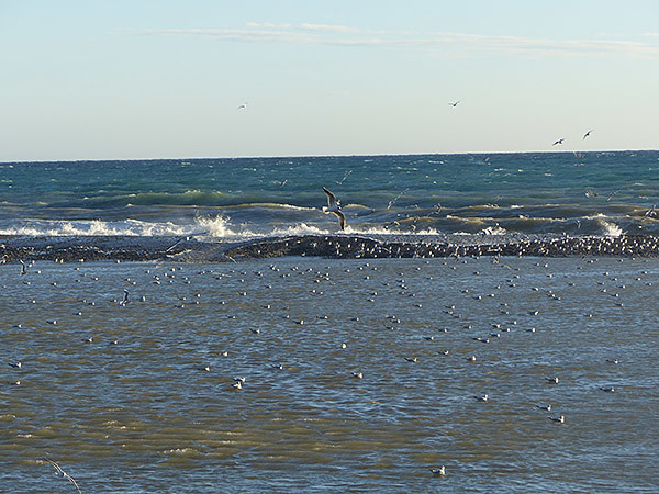 mer vintimille 1