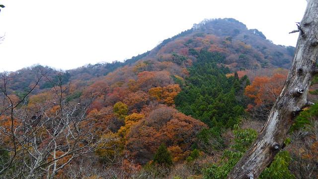 明神山 (235)