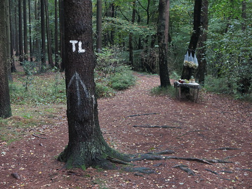 Verkaufsstand mitten im Wald