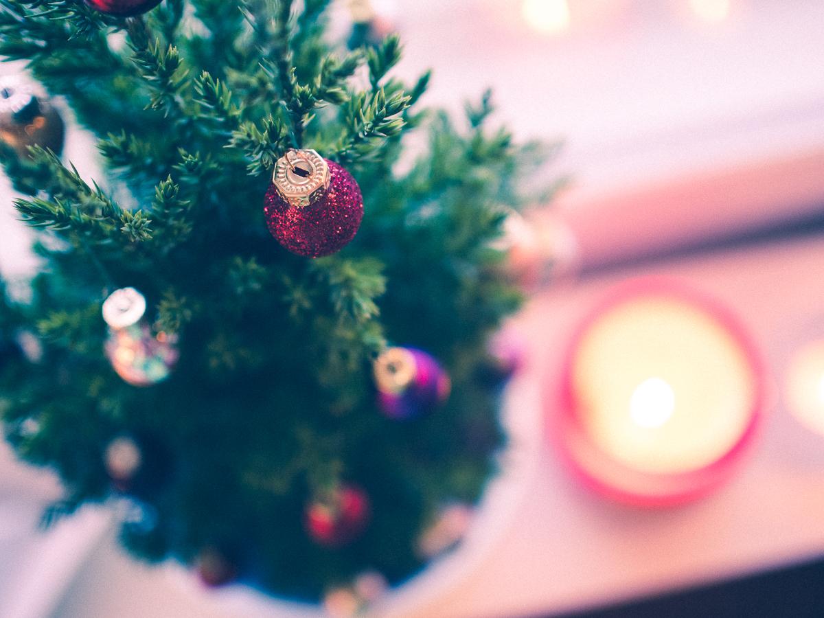 joulupuu3