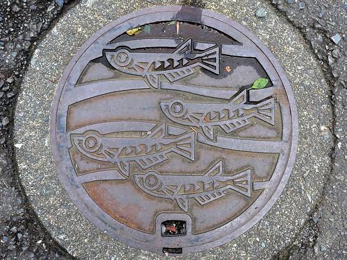 Odawara Kanagawa, manhole cover 2 (神奈川県小田原市のマンホール2)