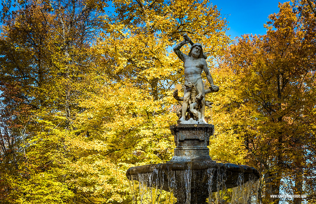 Autumn in Aranjuez 06