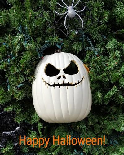 Happy Halloween! 🍊🍊🍊
