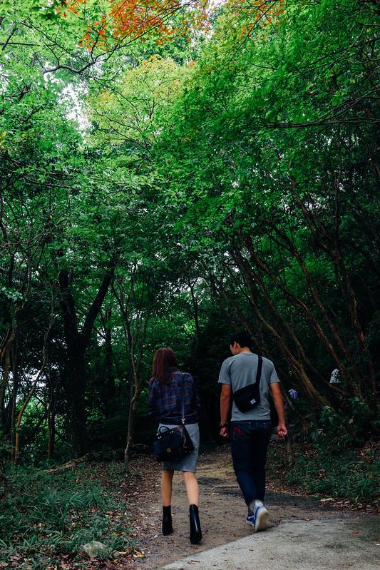 Hachimanyama-Ropeway_06