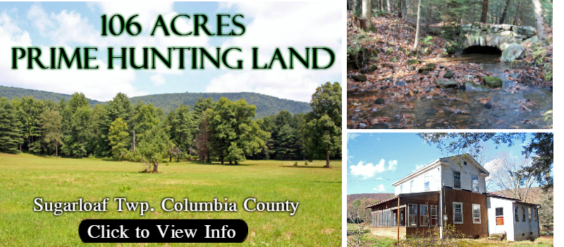 Hunting Land for sale in Columbia County Pennsylvania