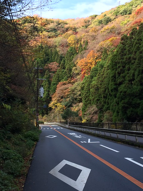 bike ride to Katsuoji