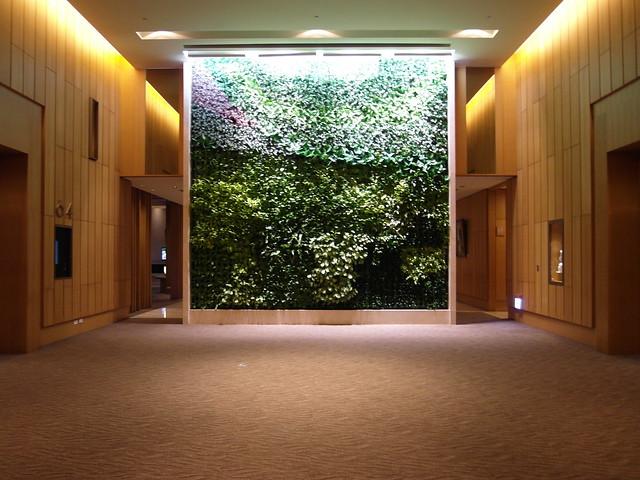 五樓會議廳外有一面充滿綠意的牆面,隔開後面的工作區域@台中日月千禧酒店