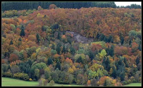 lumières d'automnes et paysages - automne 2016 30682189835_6047c99cc6