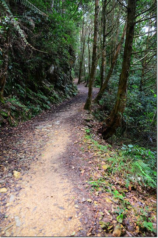 橫嶺山生態步道 1