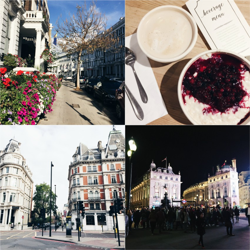 London, Le Pain Quotidien, Piccadilly Circus, Kensington