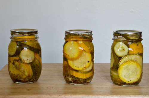Garlic Dill Zucchini Pickles | Flickr - Photo Sharing!