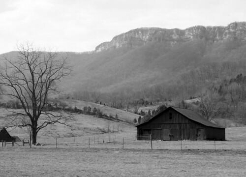 A rustic farm near Cumberland Gap