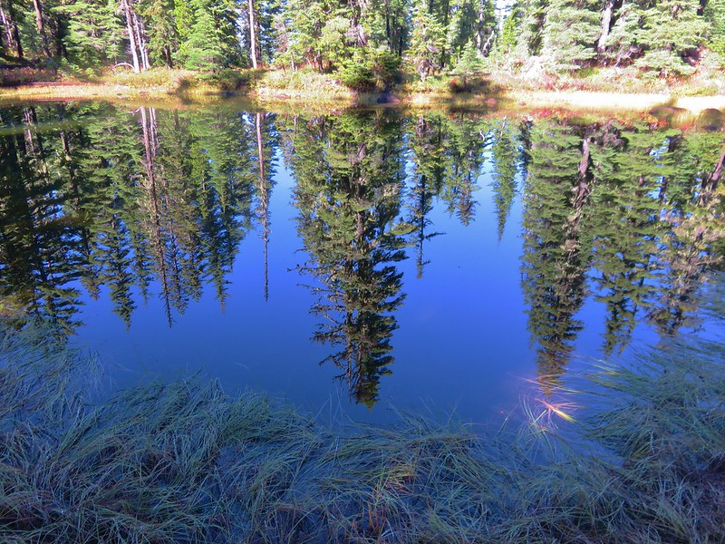 One of the many bodies of water in the Tenas Lakes area