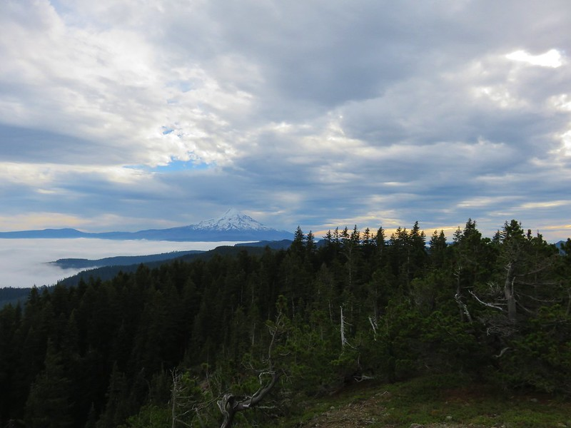 Mt. Hood from Green Point Mountain