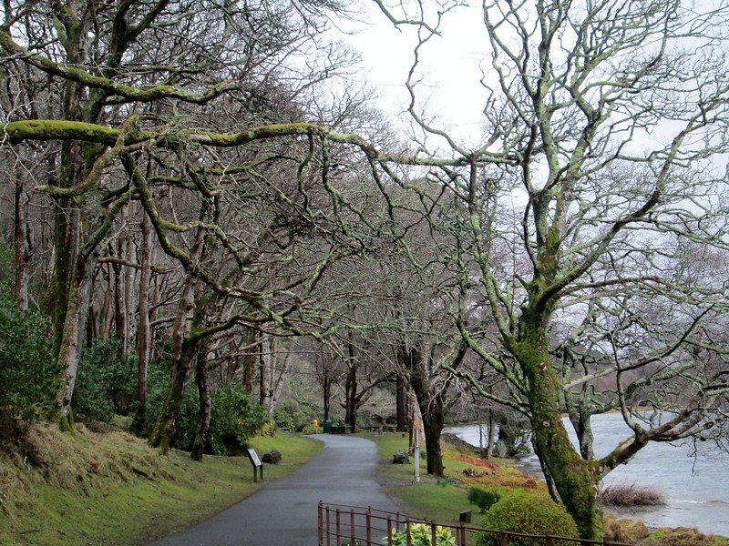 Kylemore Abbey Lake Pathway