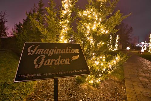 Illumination Garden