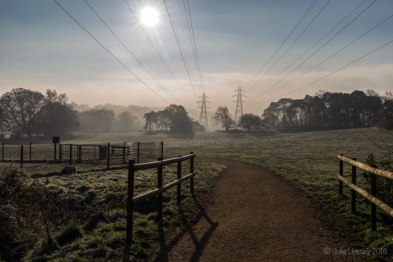 Entering the park from Poole Road on a frost morning
