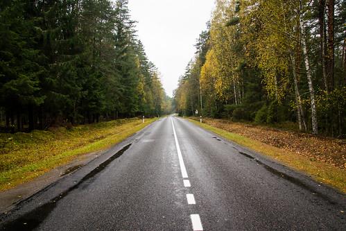 Rudens kelias