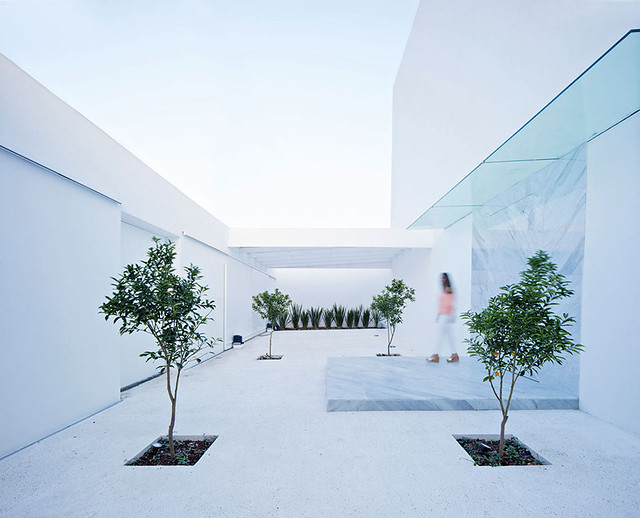 A modern Mexican residence Domus Aurea 3