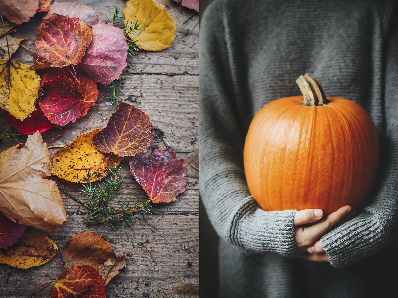 Oktober - karinevelina.se