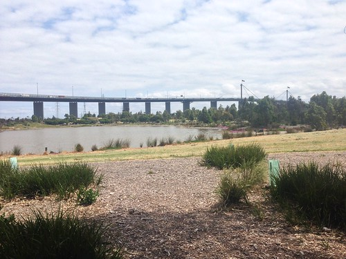West Gate Bridge from Westgate Park