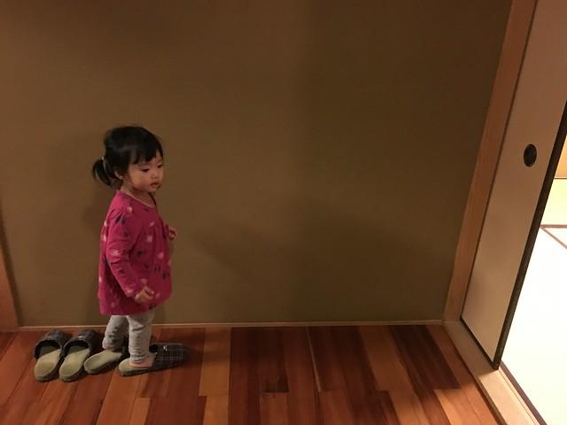 興奮的穿上室內拖的小麋鹿