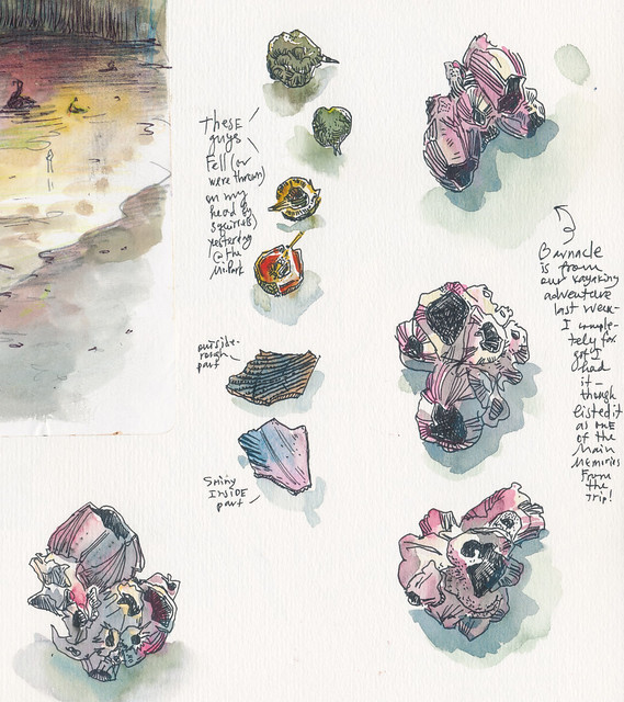 Sketchbook #100: Treasures