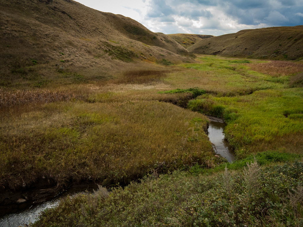 Coulee Creek