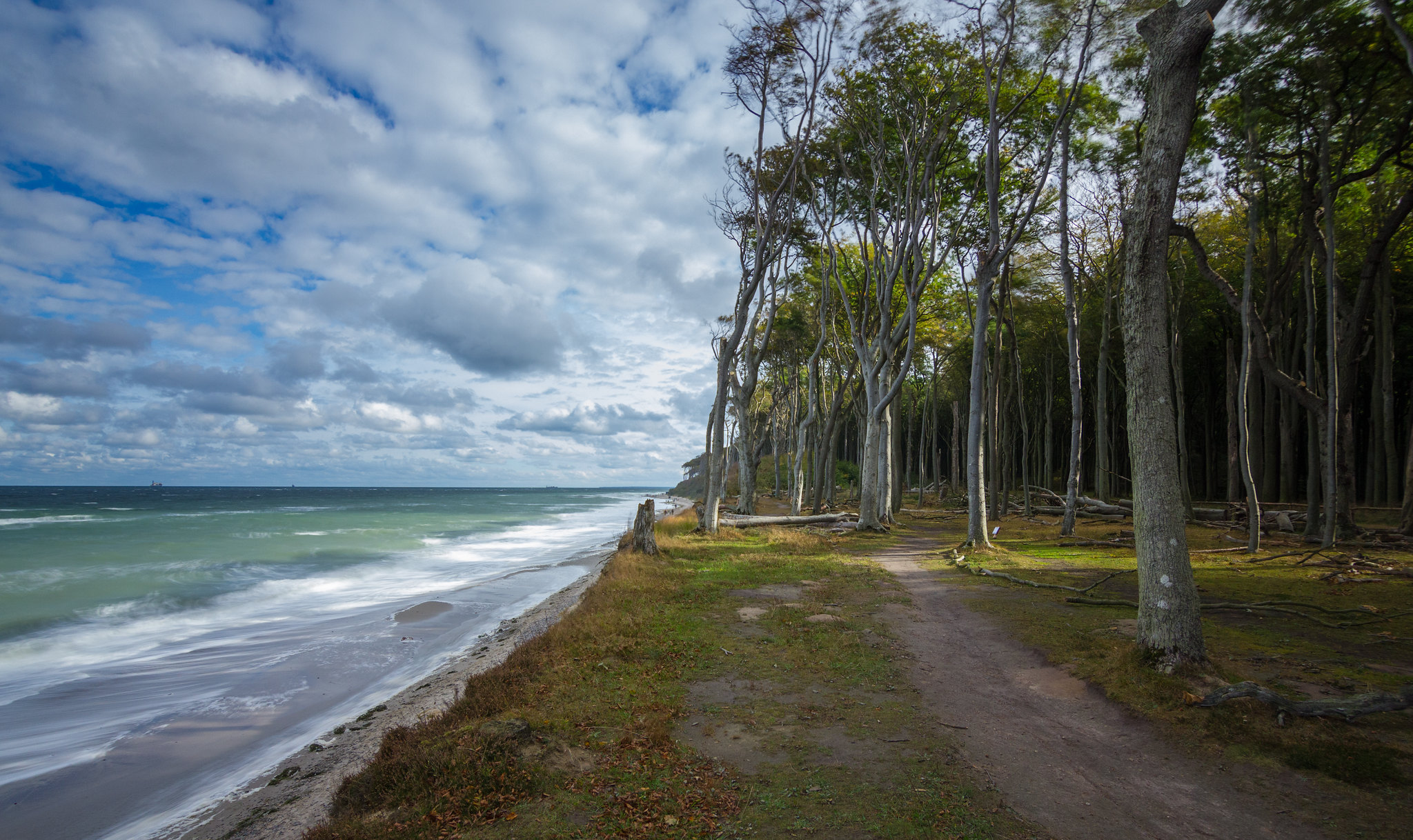Ghost Wood coast in Nienhagen