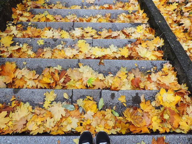 Autumn In Budapest: Gellert Hill, Budapest, Hungary