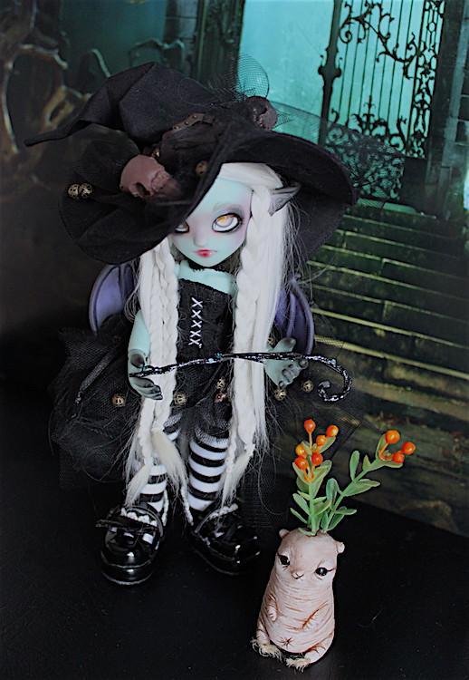 Nouvelle tenue pour ma petite Frost (Butterfly) p7 - Page 6 30733878091_18a5dc1f9d_b