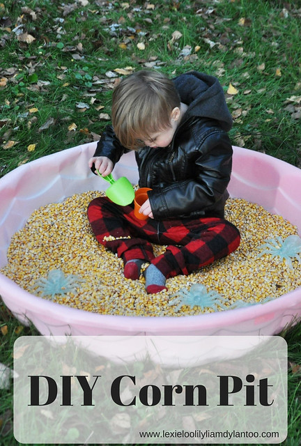 DIY Corn Pit