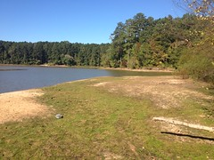 Lake Allatoona 1