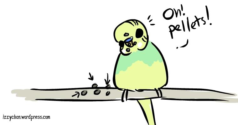 pellets bird food budgie