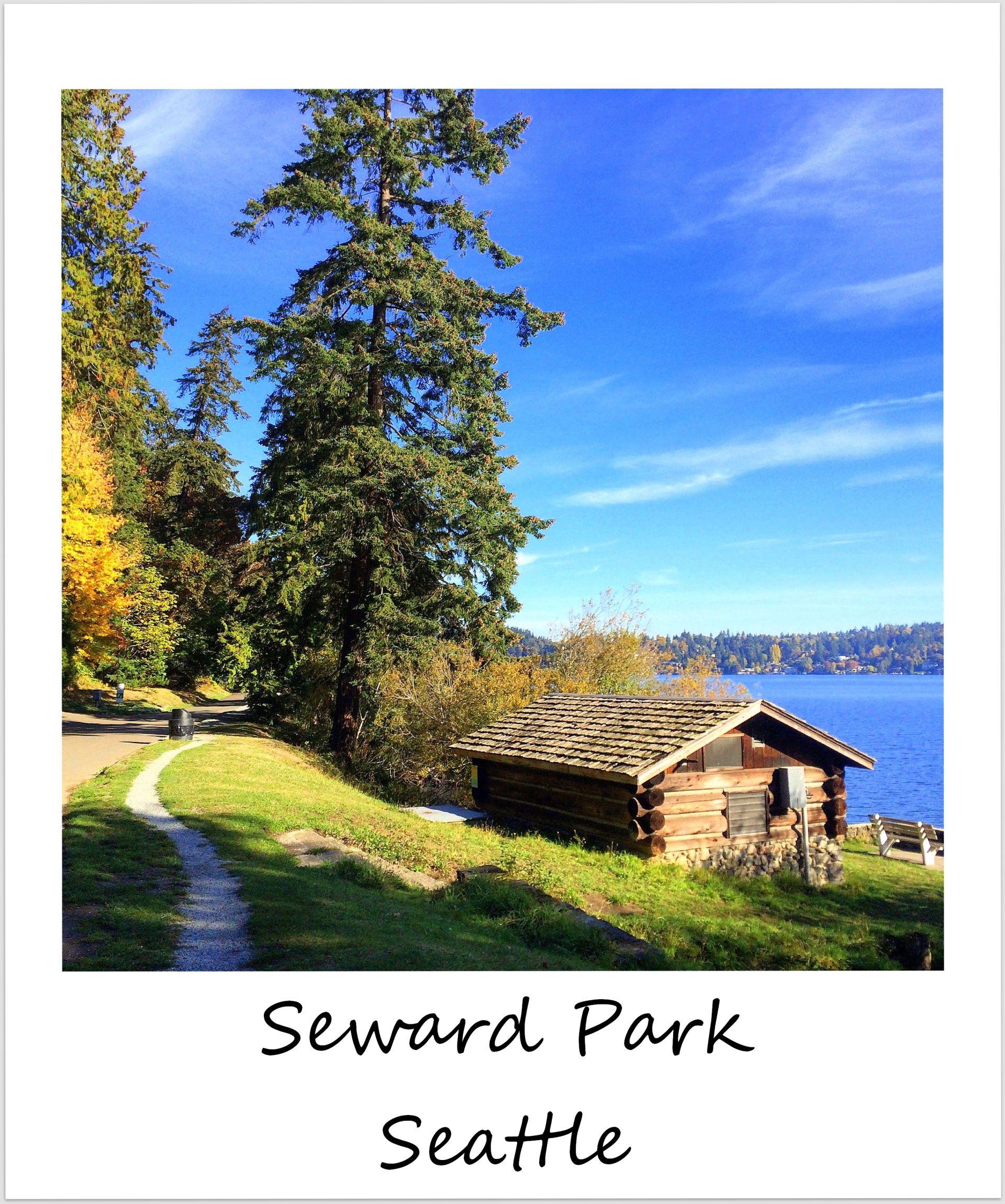 polaroid of the week usa seattle seward park