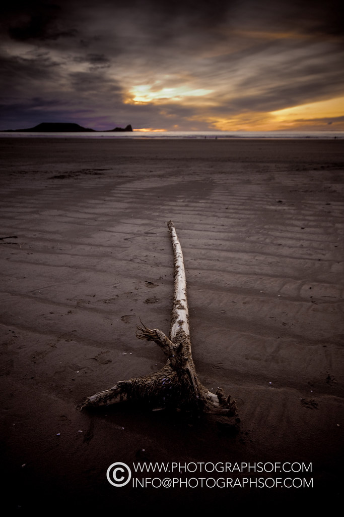 20100221Llangennith Driftwood