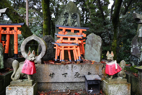 Guardian Fox Deities Fushimi Inari-taisha shrine red Tori gates walk