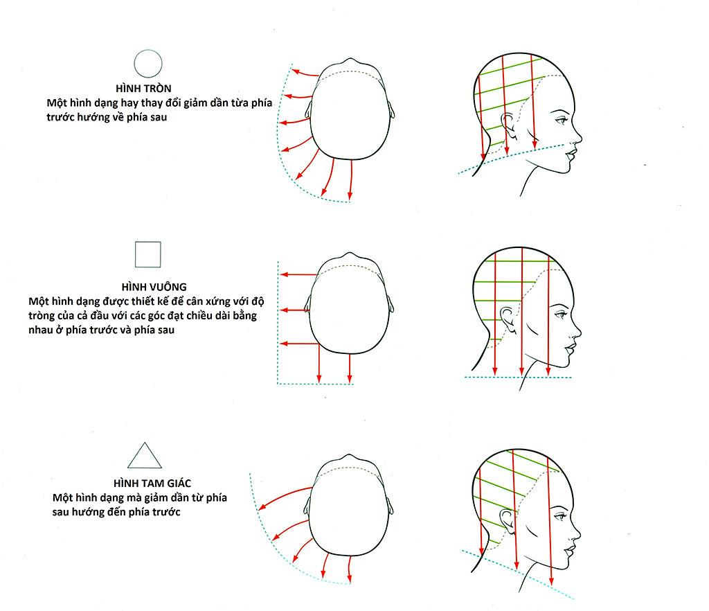 Kỹ thuật cắt trong giáo trình VIDAL SASSOON
