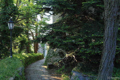 way to Rocca Montale