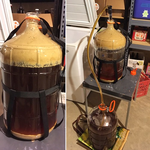 "And tonight? Racking Cupid & Psyche, an American Strong Ale inspired by Tazo's ""Passion"" tea, and brewed as a Xmas present for the wife. #homebrewing"