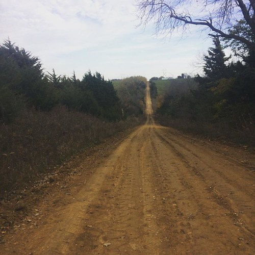 #Iowa likes its straight lines. Dirt roads and rolling hills stretch on forever. At least, it certainly felt that way at times. #spottedhorsegravelultra #girlsgonegravel #longwayhome