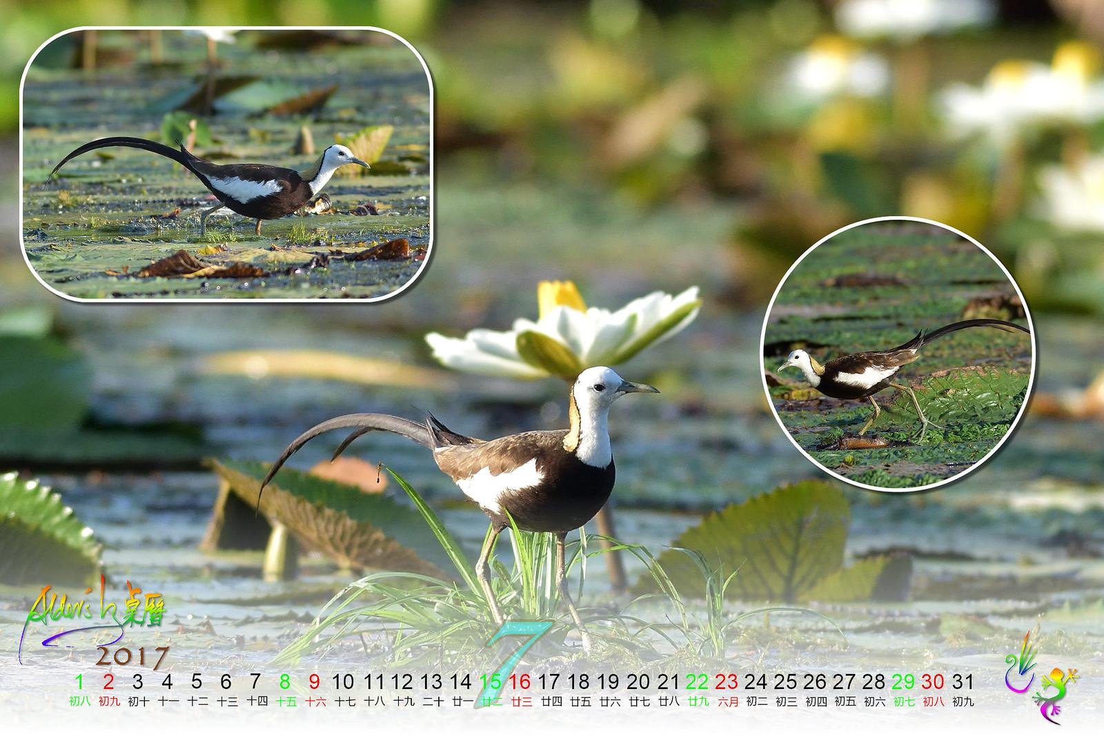 Calendar_03alder_07