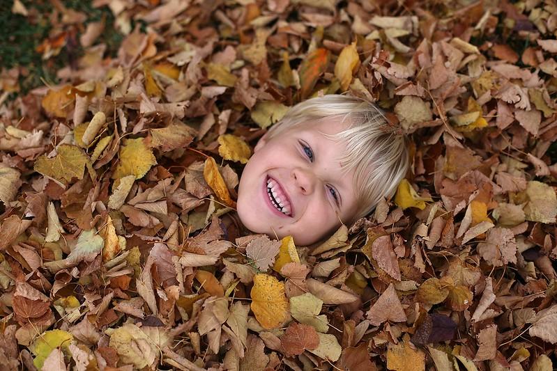 leaf fun