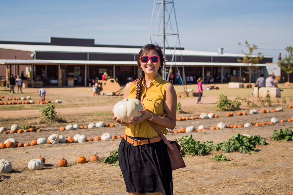Pumpkin Picking-11