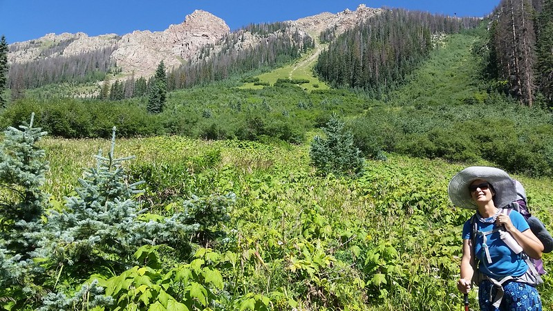 Vicki is enjoying the downhill hiking as well as the Thimbleberries on the Emerald Lake Trail