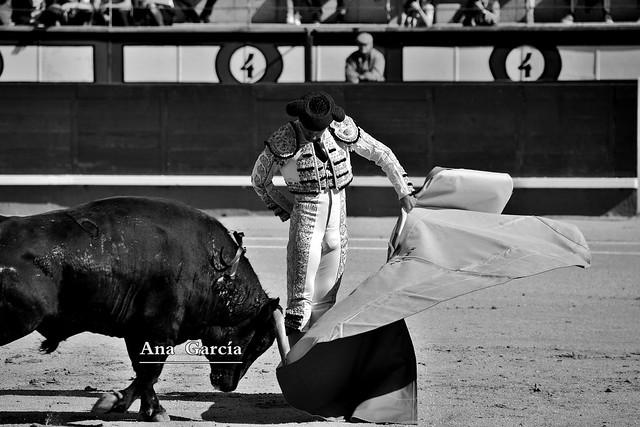 Alejandro Adame 3