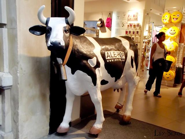 Ale-Hop cow
