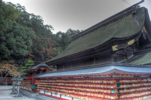 Dazaifu Tenmangu Shrine in early morning on NOV 26, 2016 vol02 (11)