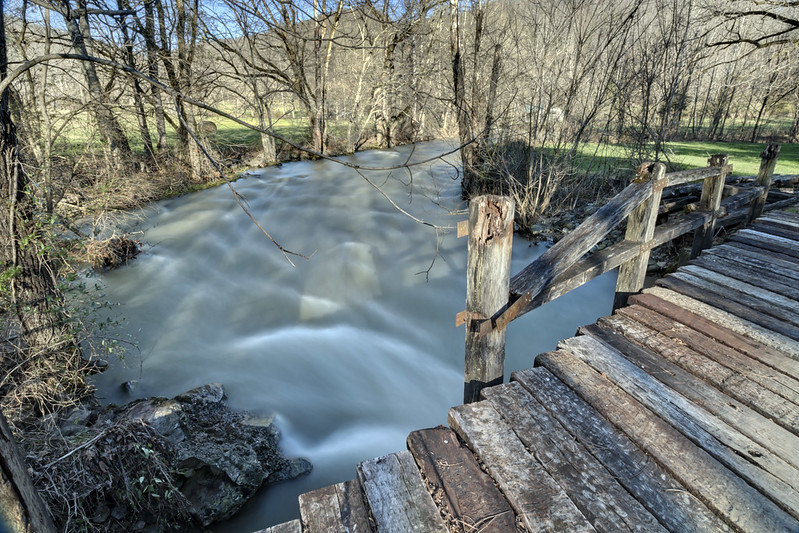 Sequatchie River, Devilstep Hollow, Cumberland County, Tennessee