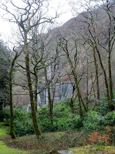 Kylemore Abbey Woodland View 5